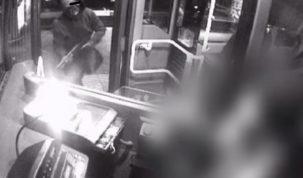 napady na autobusy w Amsterdamie