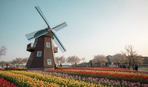 gdzie na tulipany
